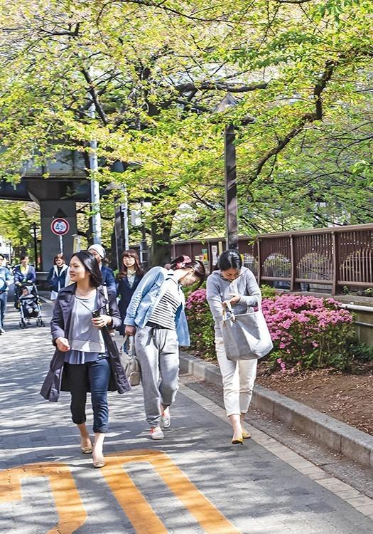 Datos curiosos de Japón