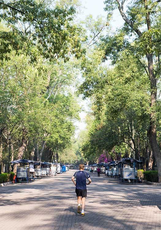 Parques en la CDMX